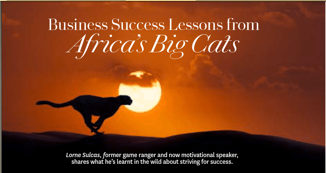 Oprah Magazine: Success Lessons from Africa's Big Cats