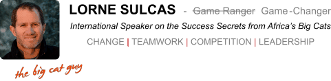 Top Motivational Speaker Lorne Sulcas - The Big Cat Guy email signature 2