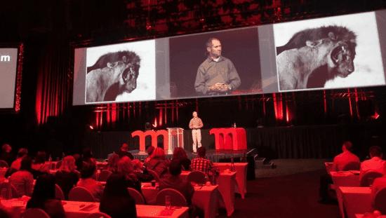 Best Motivational Speakers FAQs | Lorne Sulcas - The Big Cat Guy